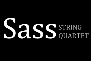 Classical String Ensemble